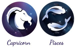 Pisces and Capricorn match